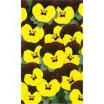 58237 Viola cor. ´ Butterfly Yellow Red Wing ´ (288)